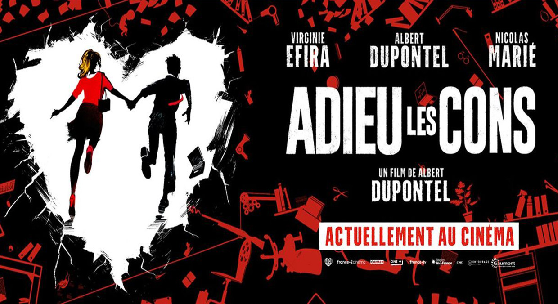 Photo du film Adieu Les Cons